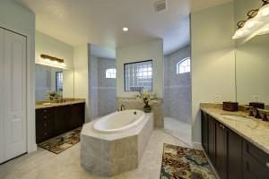 Walk-In Shower and Master Garden Tub